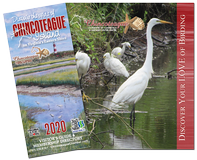 2020 Chincoteague Visitors Guide