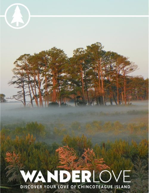 Chincoteague is for Nature Trail Lovers