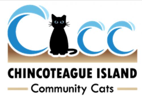 Chincoteague Island Community Cats