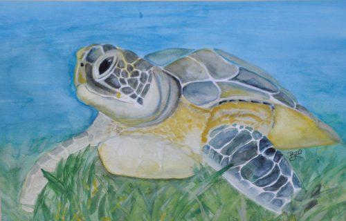 Sea Art by Beth Mills
